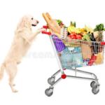 Как я с собакой на рынок ходила