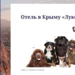 В Крым с собакой? Да ладно!.. Эксклюзивно для подписчиков нашего канала