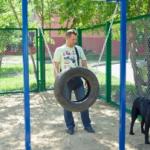 Площадки для выгула собак, сказка про Царя и особаченных (фото и видео)