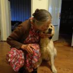 Как мы с тётушкой собаку из приюта хотели взять
