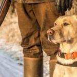 Воспитание собаки. Опыт военного кинолога