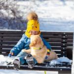 Хочу собаку! Гениальное решение популярной детской «хотелки»