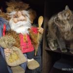 Кошка выслеживает Афанасия Демидыча и пока не решается с ним дружить