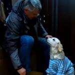 Почему нужно обниматься с собакой  на пороге вашего дома