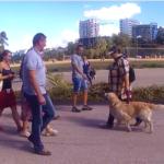 Как мы с собакой на дискотеку ходили, а потом Куба мне гадал по руке