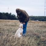 Чем поощрять собаку на дрессировке