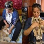 Щенотерапия и стимуляция щенков до 16-дневного возраста