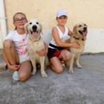 Дети и собаки. Соревнования по послушанию