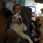 Творческие катаклизмы как следствие в доме 2х собачьих дамочек