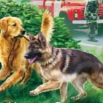 1. Как случайная книга про собак изменила трудного подростка