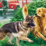 2. Как случайная книга про собак изменила трудного подростка