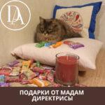 Подарки от Мадам Директрисы. Отжала себе две подушки