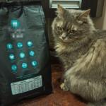 Магазинная молитва и новый корм для кошки. Что не так?