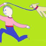 Зачем тренировать собак, если нет перспективы практического применения полученных навыков